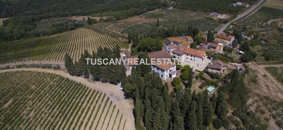 Montespertoli, Florence, Tuscany - Organic farm for sale with manor villa, wine cellar and former farmhouse converted into 6 apartments. 47 ha (116 acres) land