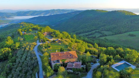Umbria farm, vineyard, olives, swimming pool, agritourism