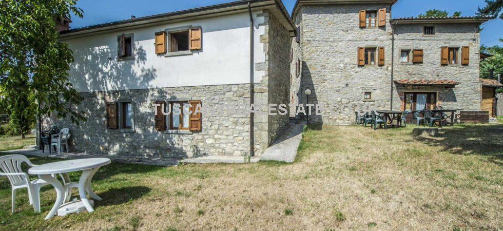 Hospitality property for sale near to Caprese Michelangelo in Tuscany. Small complex with 4 letting units plus owners accommodation, land, olive trees, gardens and swimming pool.