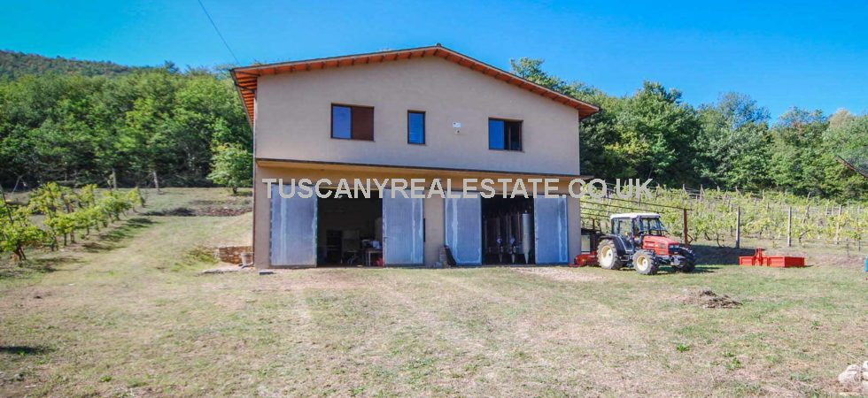 Small vineyard in Italy with potential for sale. Located near to Orvieto in Umbria this property has been out of full time wine production for a while and needs a new owner to revive and bring it up to scratch.