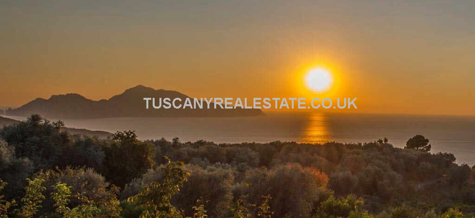Sorrento Organic Farm and Agriturismo For Sale