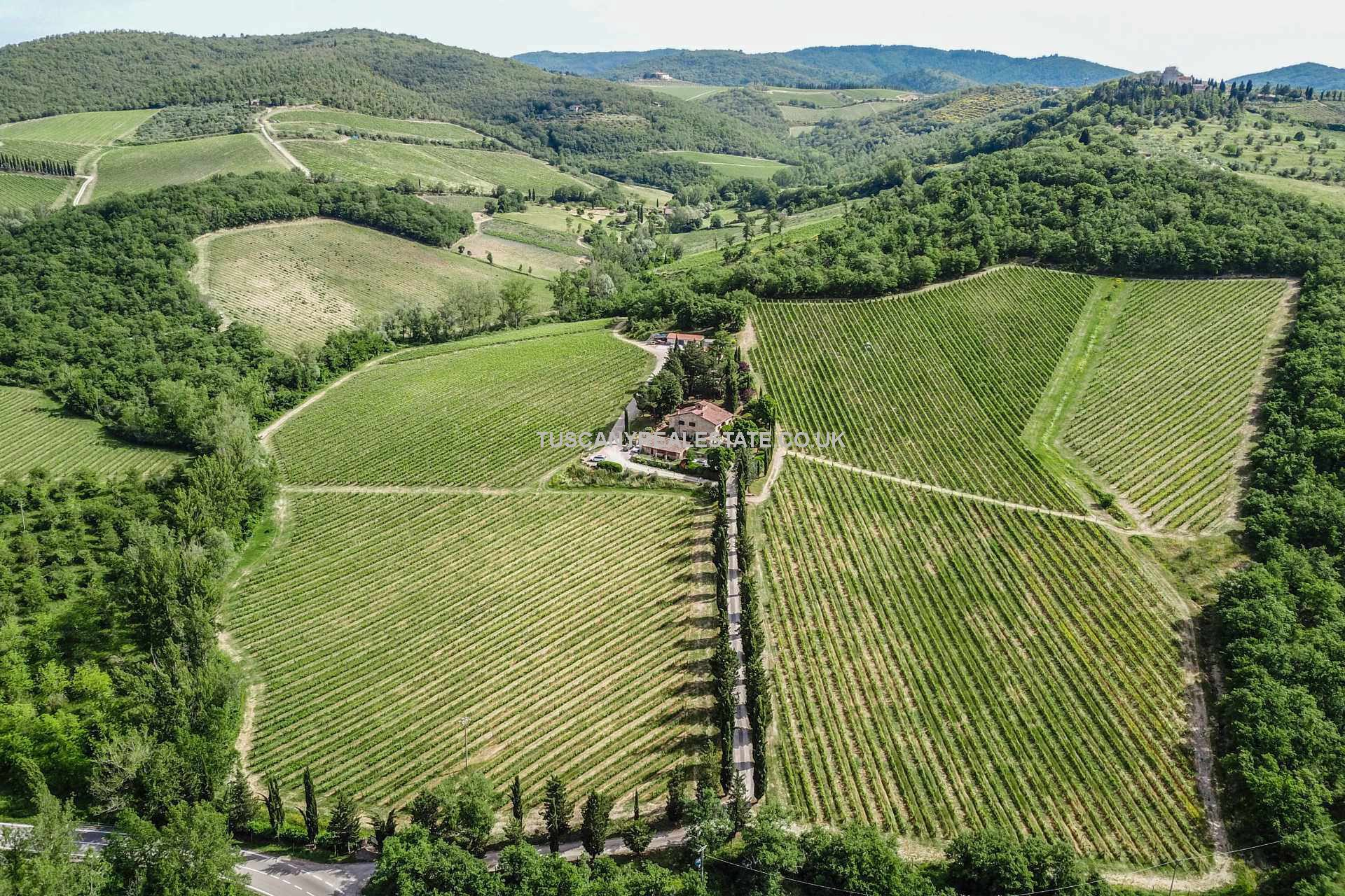 Organic wine growing and making business and property
