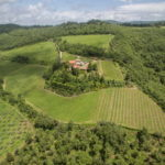Chianti Classico wine and olive oil estate