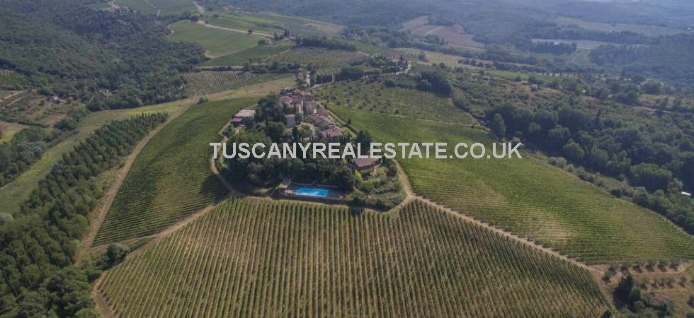 Restored Medieval castle in Tuscany with winery, vineyard and olive grove. Estate has 50 Hectares of land overall. Modern wine making production and equipment.