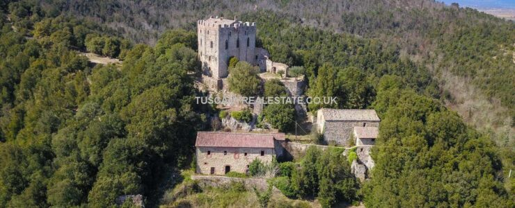 Medieval Castle Property For Sale