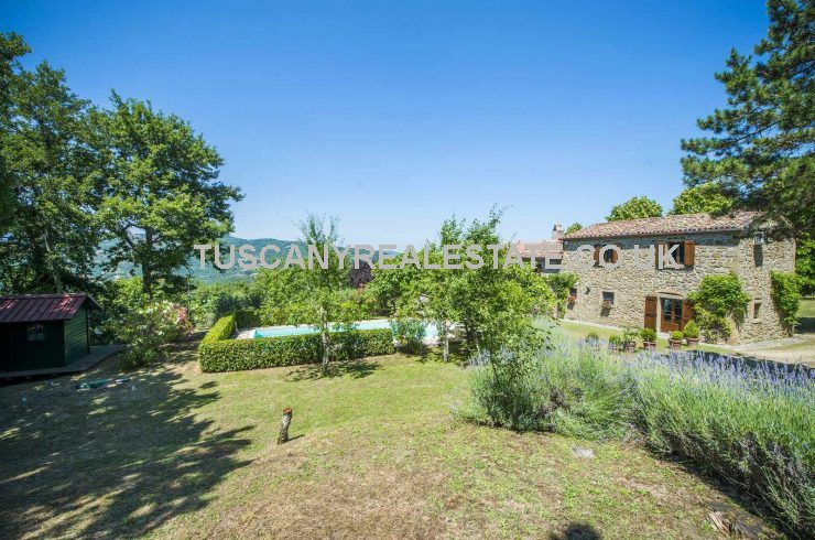 Property with Vineyard in Italy